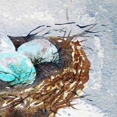 Bird-Nest-detail,-March-2013,-Gerri-Youn