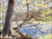 New River Spring.jpg