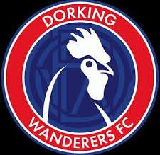 Fixture Change: Dorking Wanderers