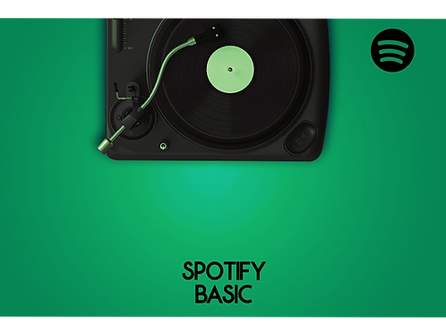 Spotify - Basic Package
