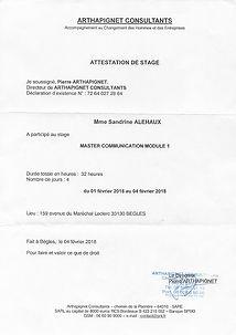 2020-07-06_Arthapignet_Consultants_Maste