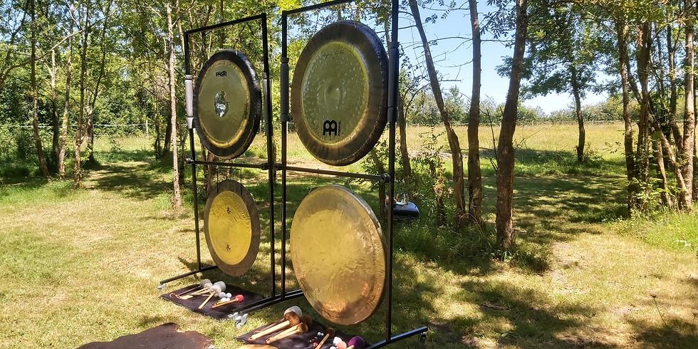 Bain de gong yin en extérieur à la salle des fêtes de Saint-Palais à 20h30.