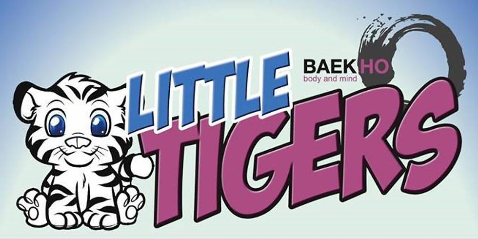 Little Tigers Aufbauseminar