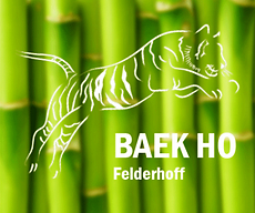 BAEKHO Felderhoff