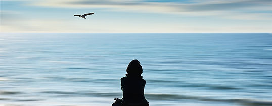 Silhoutte of person looking into horizon