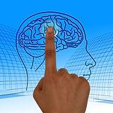 ADHD Brain Wiring