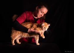 Consultation ostéopathie chat
