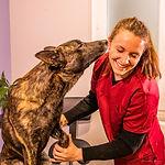 Ostéopathe animalier Mathilde Mazieres