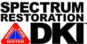 Spectrum - DKI Logo.jpg
