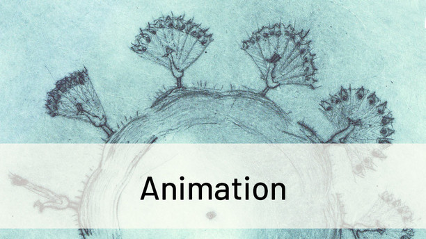 Click here to see my Animations page