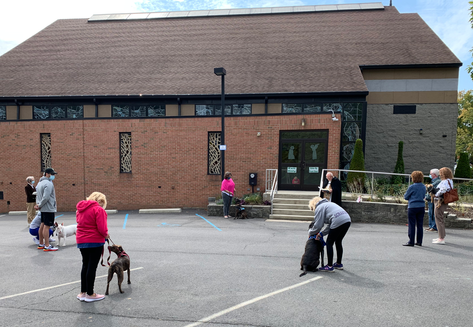 Blessing of the animals on the Feast day of St. Francis, Sunday, October 4th 2020