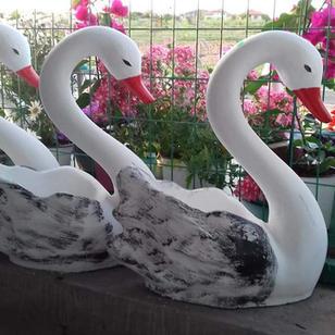 Лебед 50лв