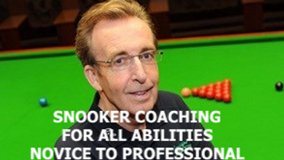 Terry Griffiths Coaching, Professional