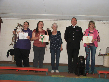 Success again in Kennel Club Canine Good Citizen tests