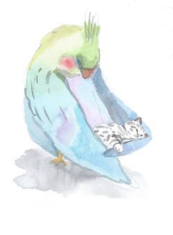 L'oiseau et le chat