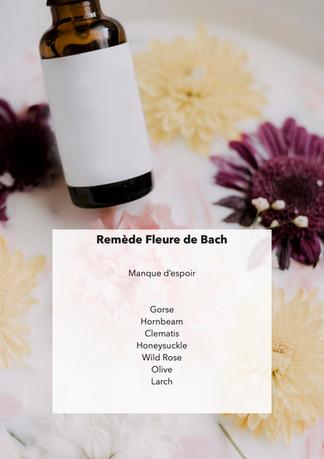 Fleure de Bach - Manque d'espoir