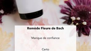Fleure de Bach - Manque de confiance