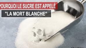 Pourquoi le sucre est appelé « La Mort Blanche »