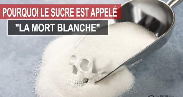 ob_c707ff_sucre-mort-blanche2.jpg