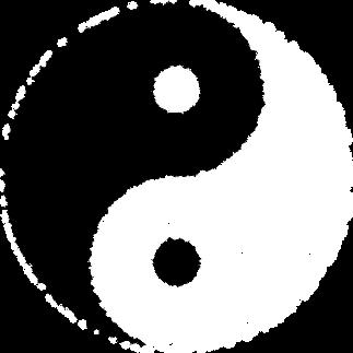 Médecine traditionnelle chinoise, le Yin et le Yang.