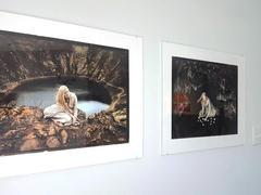 Lionheart Gallery