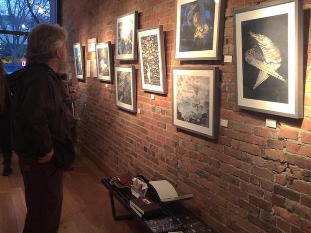 Open Shutter Gallery