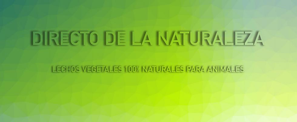 cabecera web.png