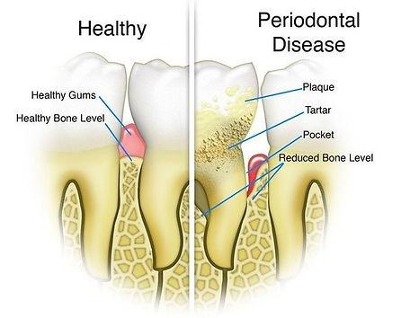 Dentist Ballarat (52).jpg
