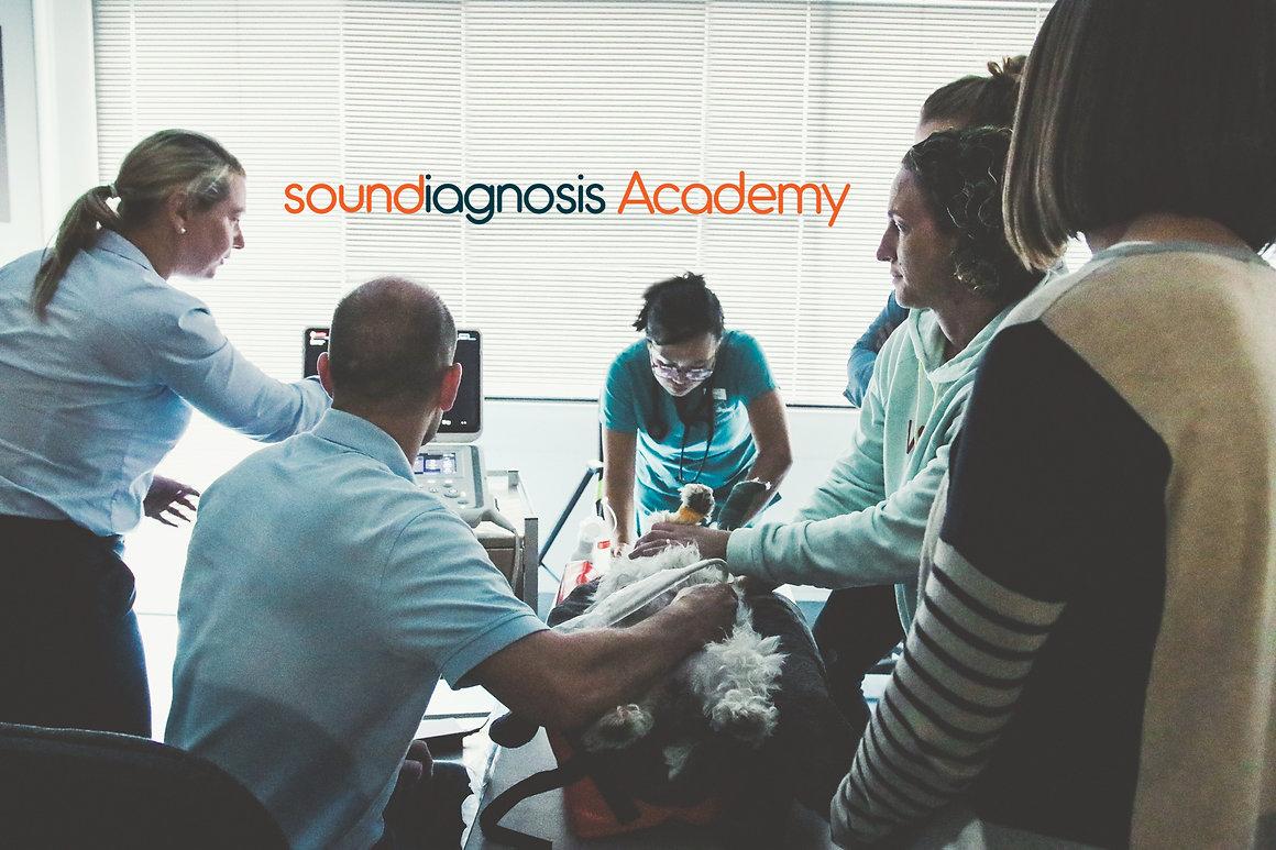 Academy&Logo.jpg