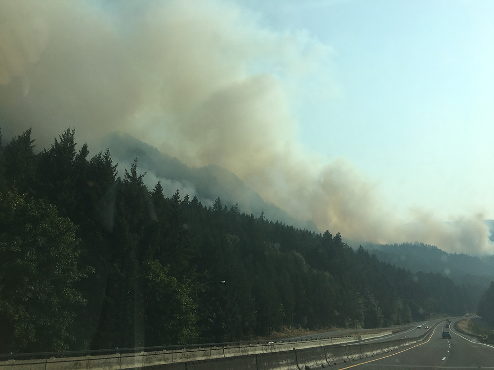 The Eagle Creek Fire visible from I-84 Westbound, one day after it began.