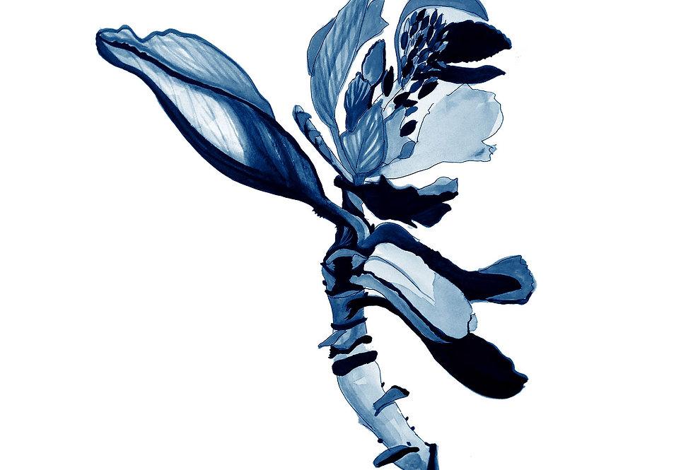 BOTANICAL 5 DELFT BLUE SERIES