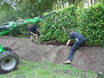 laurel 4 planting.jpg