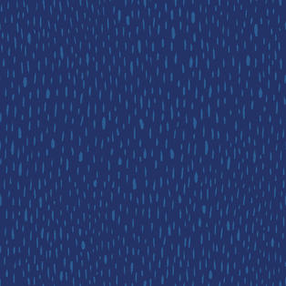 blue Cat compl3_web.jpg