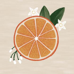 Orange half.jpg