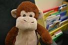 KS Monkey.JPG