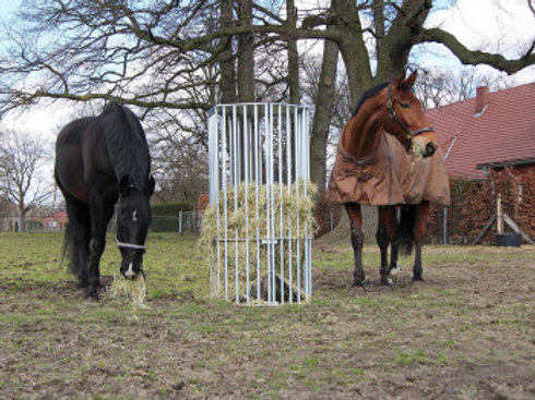 Pferderaufe sechseckig