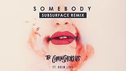 The Chainsmokers - Somebody (Subsurface Remix)