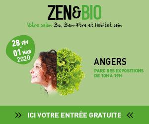 jpg-BANNIERE-ZEB-ANGERS-20-300x250px-CTA