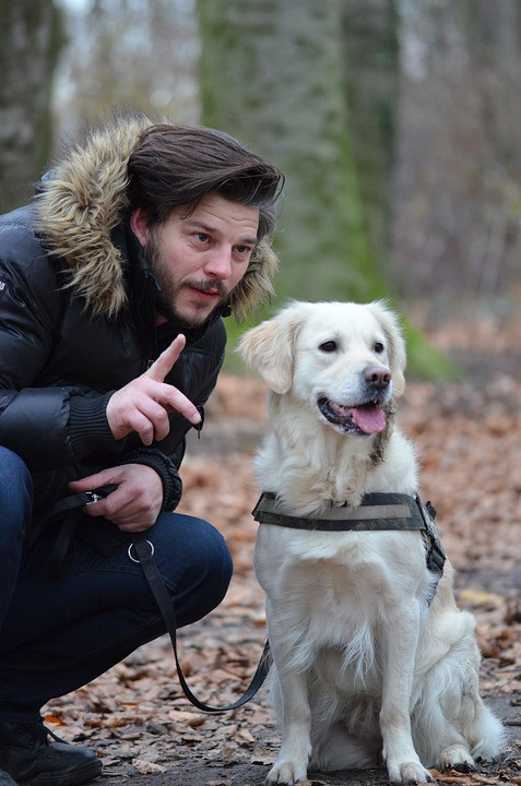 Consejos para pasear a tu perro