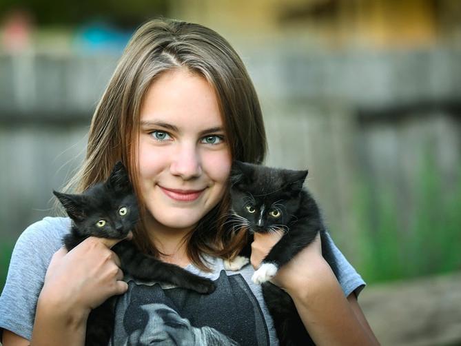 Top 5 de enfermedades que transmiten los gatos a las personas