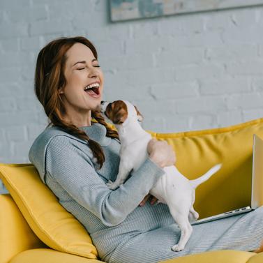 Cómo cuidar a un cachorro ¡Te damos 5 tips!