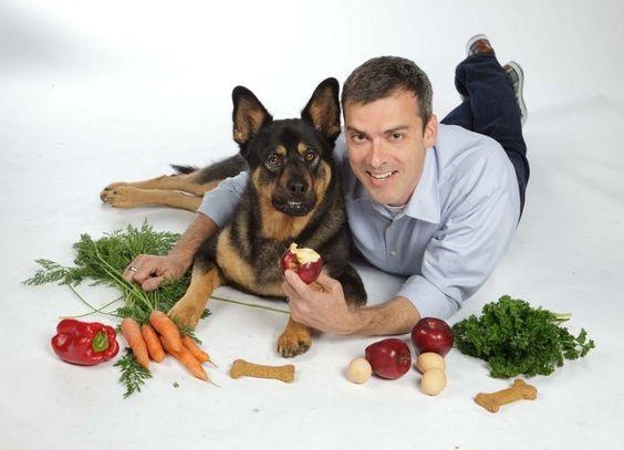 Comida natural para perros ancianos