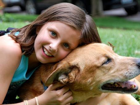 Salud dental en perros: ¿cómo cuidarla?