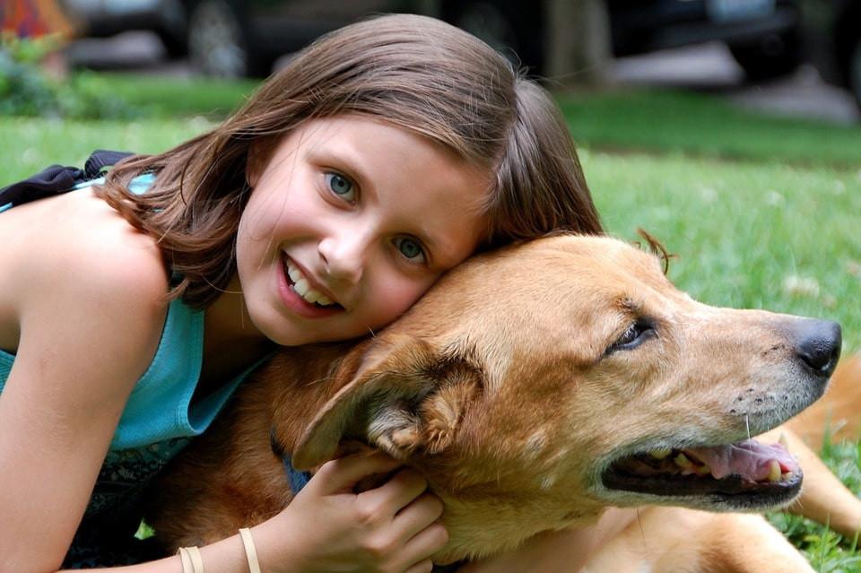 Por qué cuidar la salud dental de tu perro