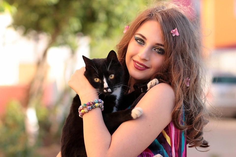 10 mitos comunes sobre gatos
