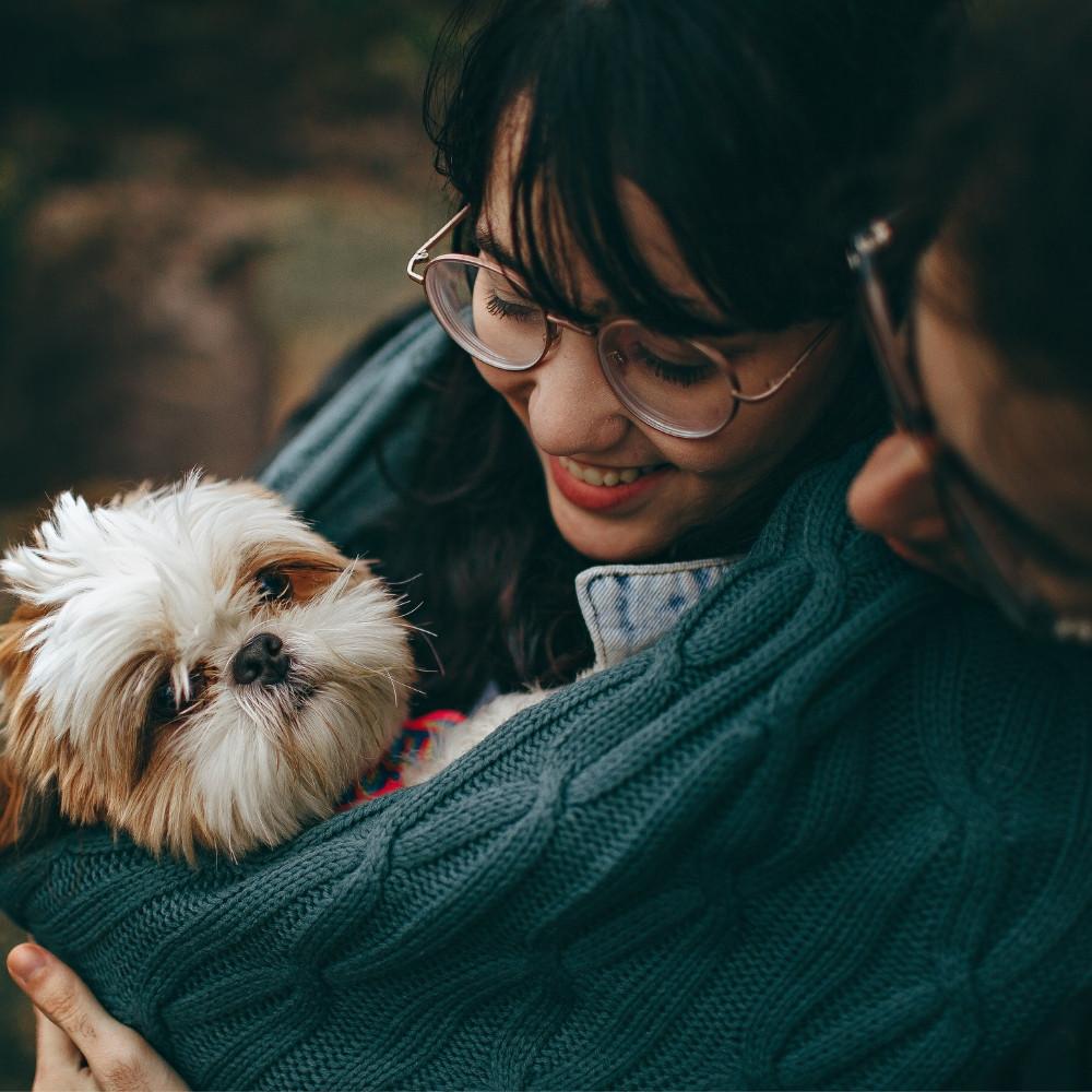 Por qué adoptar una mascota