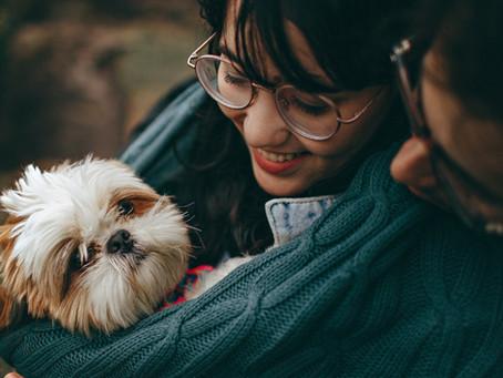 Adoptar: un acto lleno de amor
