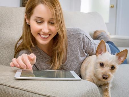 Las mejores aplicaciones móviles para dueños de perro