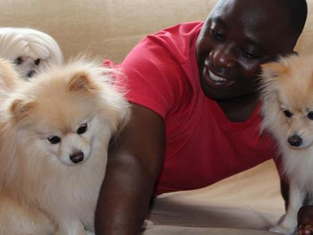 ¿Cómo cuidar una mascota de manera económica?