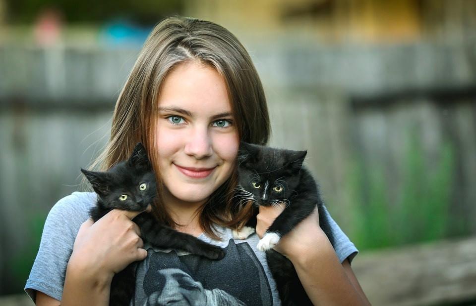 Enfermedades graves en gatos